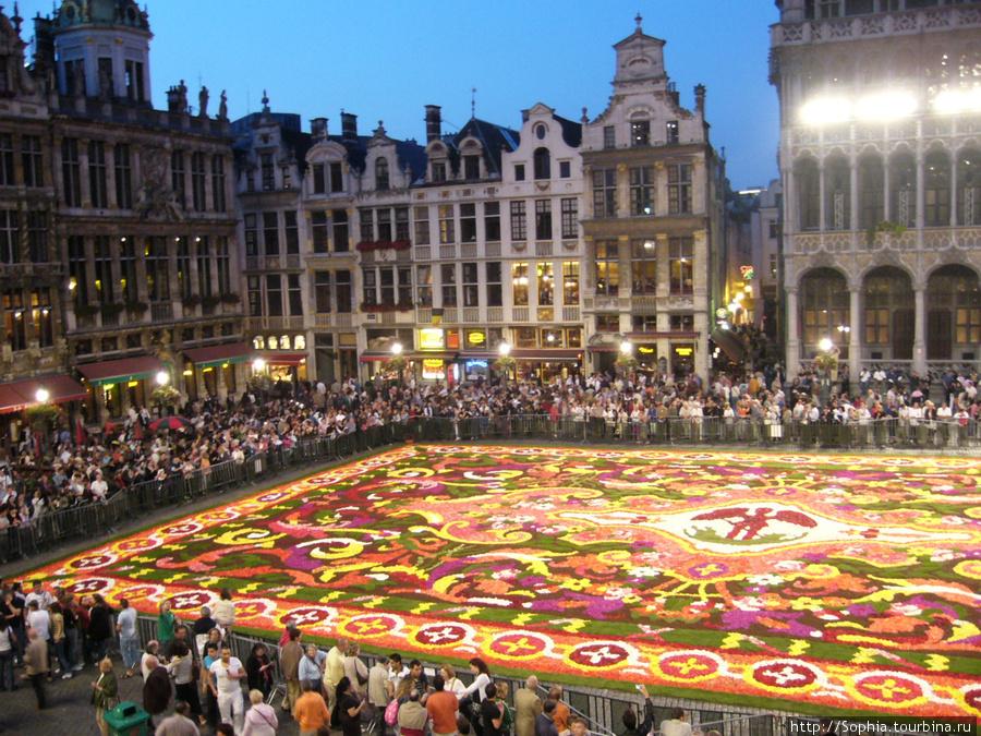 картинки бельгия турция последнее время