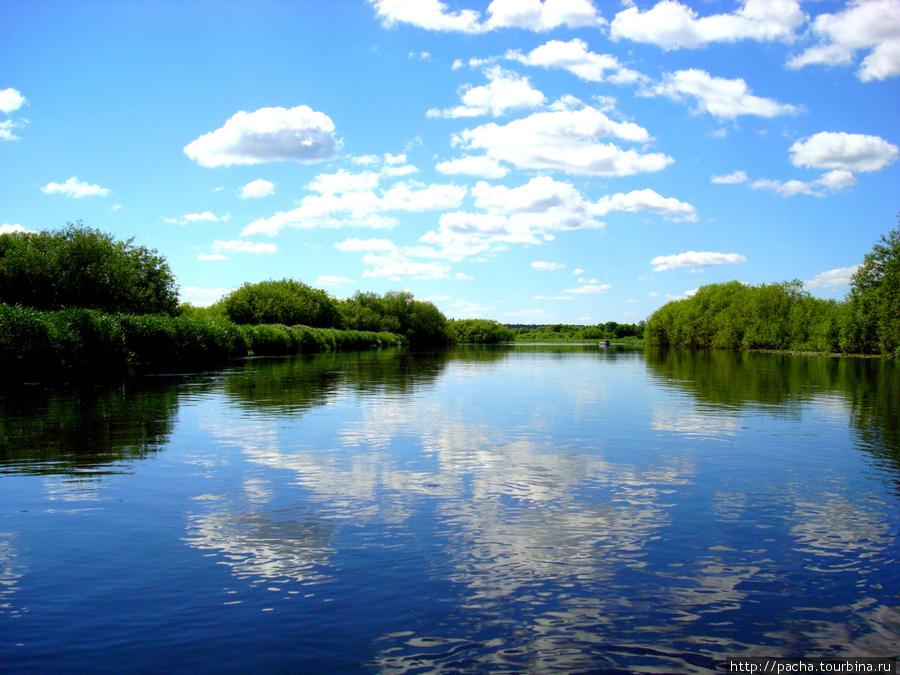 изготавливают простых реки белоруссии картинки правда любителя